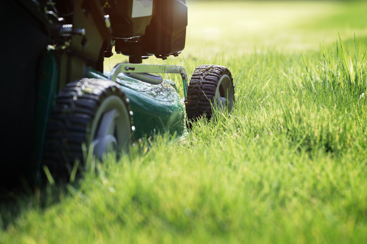 maintenance, snow removal, lawn care, senior living community, programs, wedgewood estates